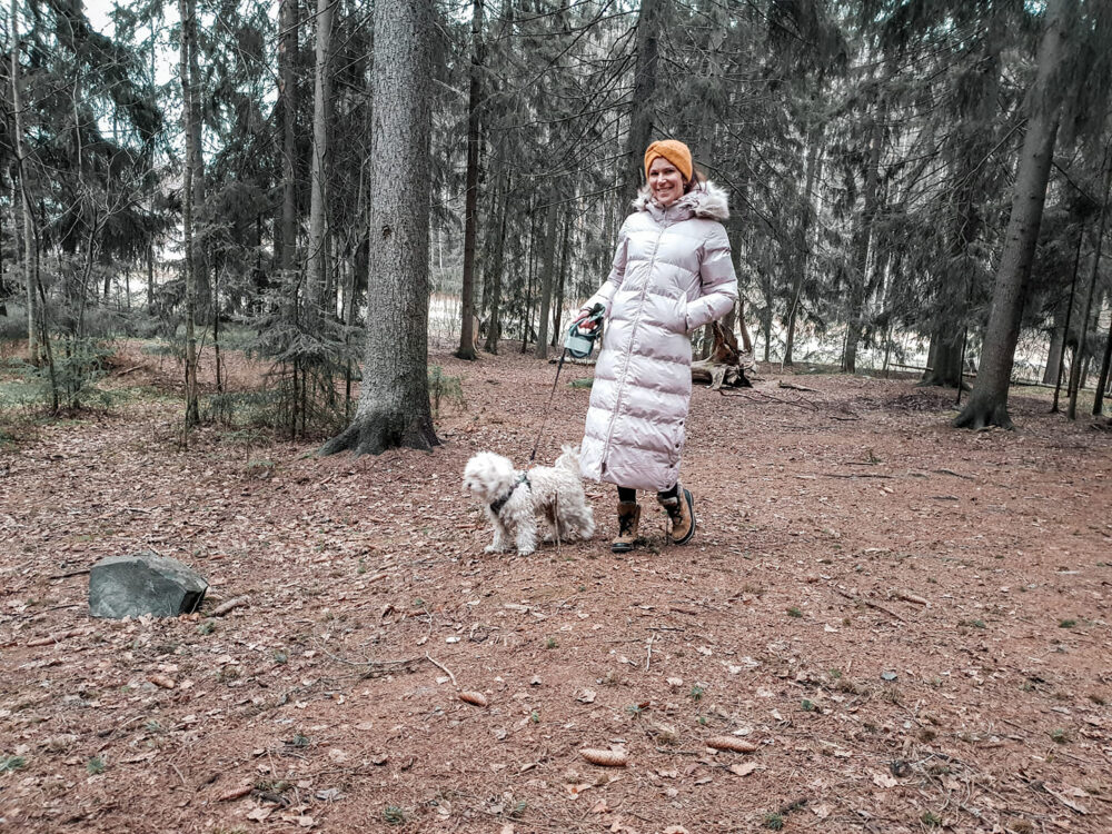 Jos lunta ei tule, niin Lappi kutsuu tänä talvena
